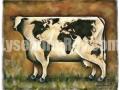 La vache du monde
