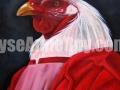 Coq cardinal