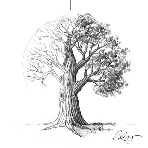 Comment dessiner un arbre?