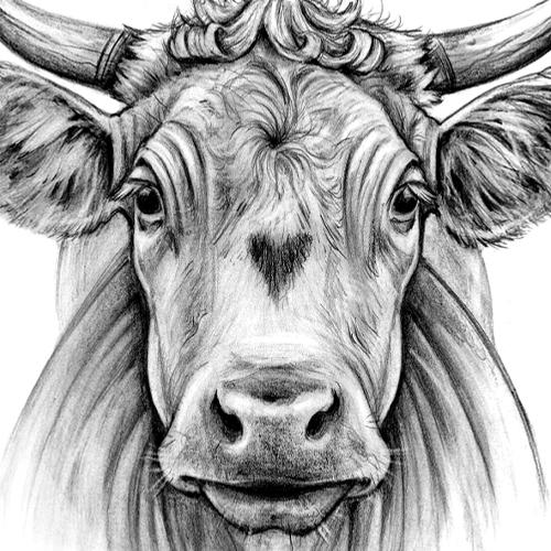 image capsule la vache