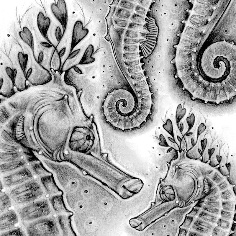 f crop boutique hippocampe